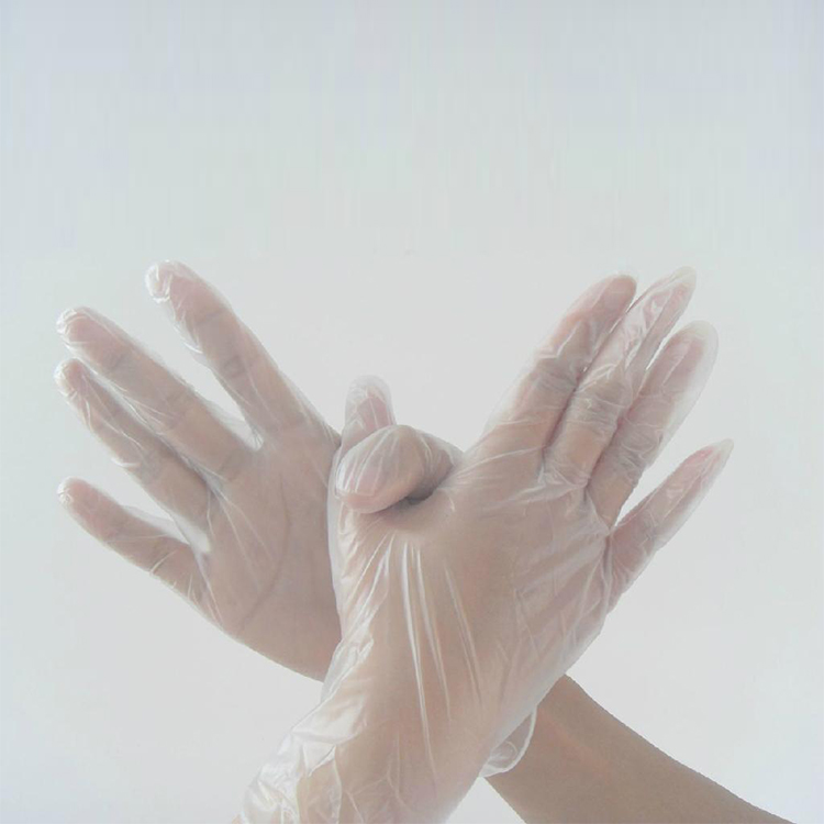 Cleanroom Powder Free PVC Glove